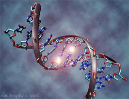 epigenetics.uni-saarland.de
